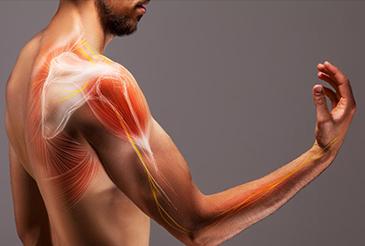 Symmetric and Asymmetric Arthritis